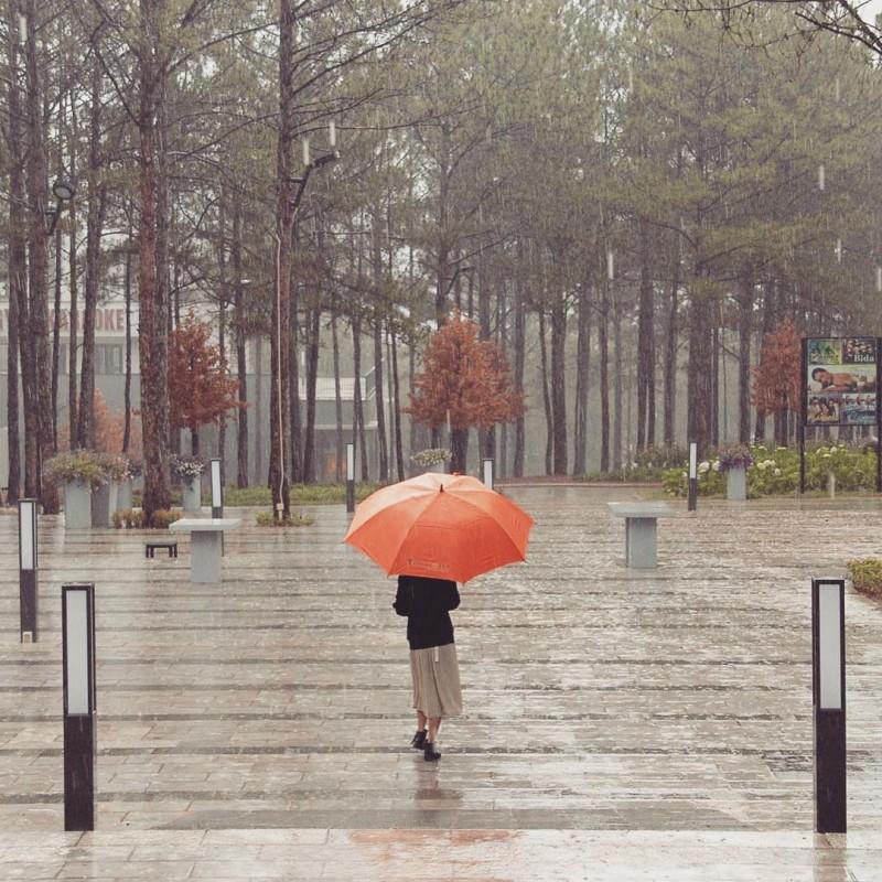 Bạn đã biết Đà Lạt mưa thì đi đâu chơi chưa