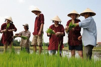 Khách Tây:Người Việt vẻ ngoài lạnh lùng nhưng trái tim ấm áp