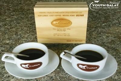 Cà phê chồn Đà Lạt - loại cà phê đắt nhất Thế giới