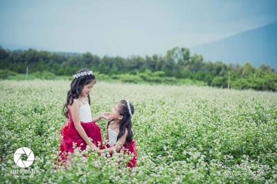 2 thiên thần nhí siêu đáng yêu giữa cánh đồng tam giác mạch