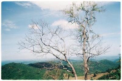 Di Linh(Lâm Đồng) chốn mơ mộng cho kẻ yêu núi rừng hoang dã