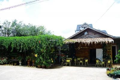 Quán cà phê bên trong căn nhà gỗ hơn 70 năm ở Đà Lạt