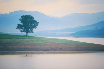 Sẽ thật tuyệt vời nếu được cắm trại ở đây khi đến Đà Lạt!