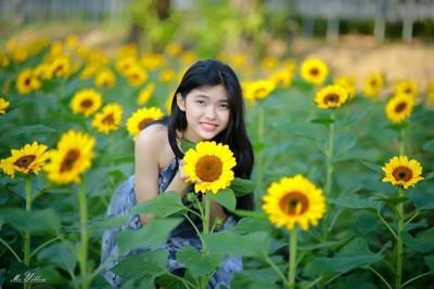 Một 'Đồi hoa mặt trời' ở Đồng Nai vừa mới được tìm thấy