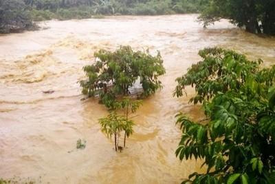 Di Linh: Người dân trở tay không kịp vì đập Kala xả lũ