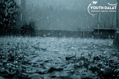 Anh ra đi ngày mưa