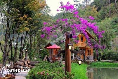 Ma Rừng Lữ Quán - Chốn Thâm Sơn Tiên Cảnh