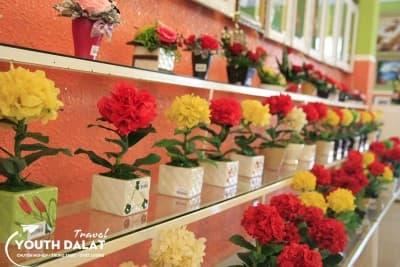 Rừng Hoa - Nơi bất tử cho những loài hoa Đà Lạt