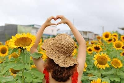 Ngẩn ngơ trước vườn hoa khổng lồ tại Homestay Cánh Đồng Hoa