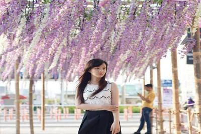 Check-in ngay lễ hội hoa Tử Đằng ở AEON Mall Bình Dương