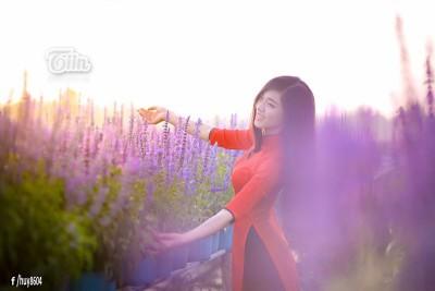 Đừng bỏ lỡ vườn oải hương mê đắm tại Đồng Nai