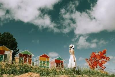 Sunny Farm - Nông Trại Vui Vẻ 'Bắt buộc phải ghé' ở Đà Lạt
